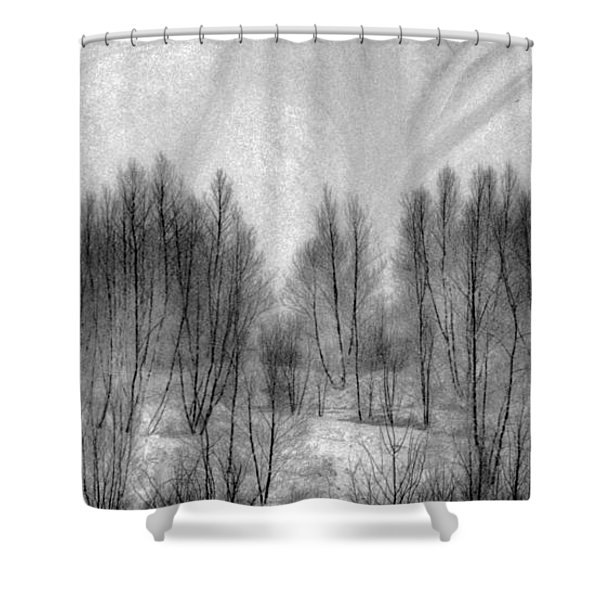 Boney Piles Shower Curtain