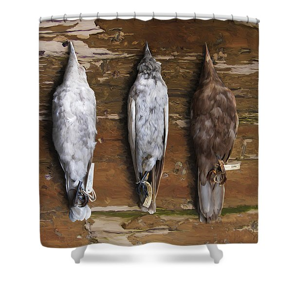 10. 3 Crows Shower Curtain