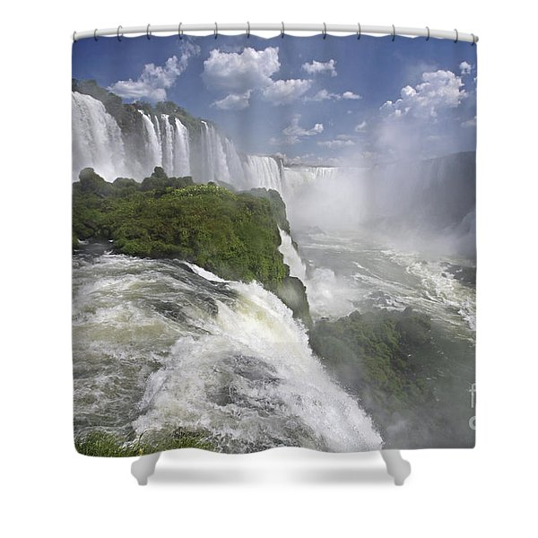 111230p122 Shower Curtain