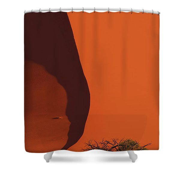 120118p072 Shower Curtain
