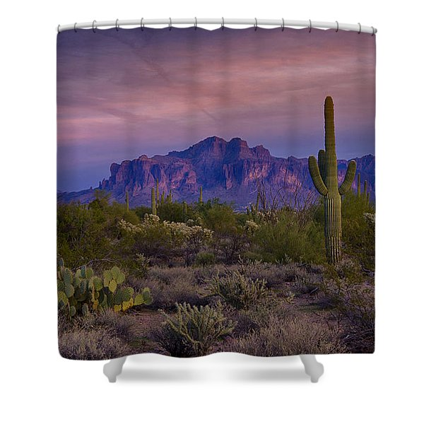 A Beautiful Desert Evening  Shower Curtain