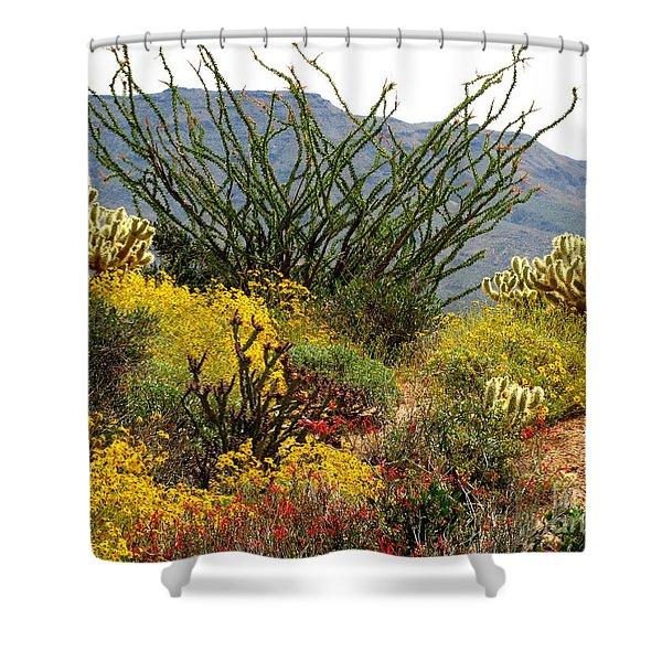 Arizona Springtime Shower Curtain