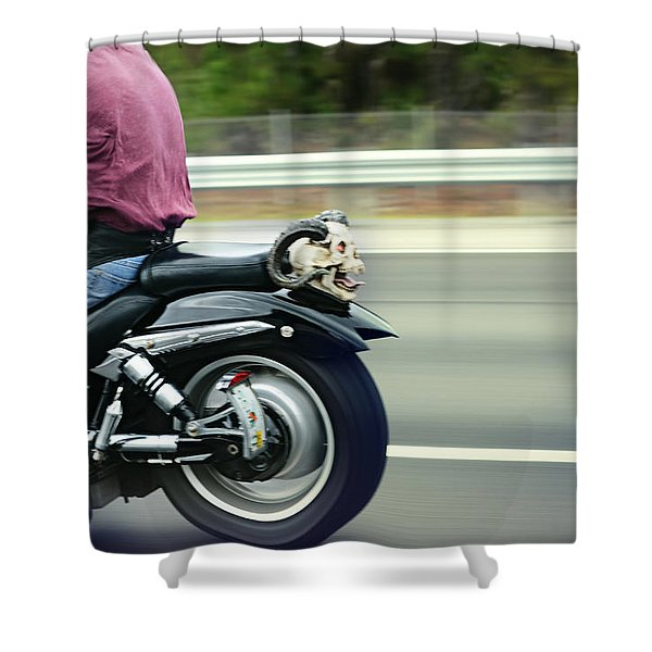 Bat Out Of Hell Shower Curtain