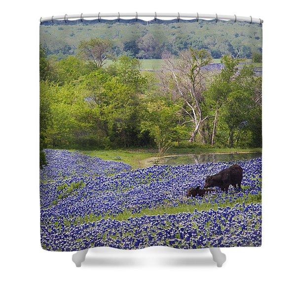 Bluebonnets On The Farm Shower Curtain