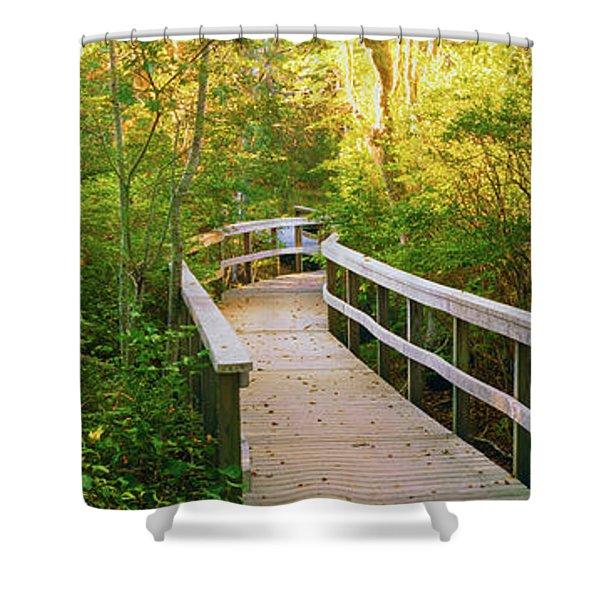 Boardwalk Passing Through A Forest Shower Curtain