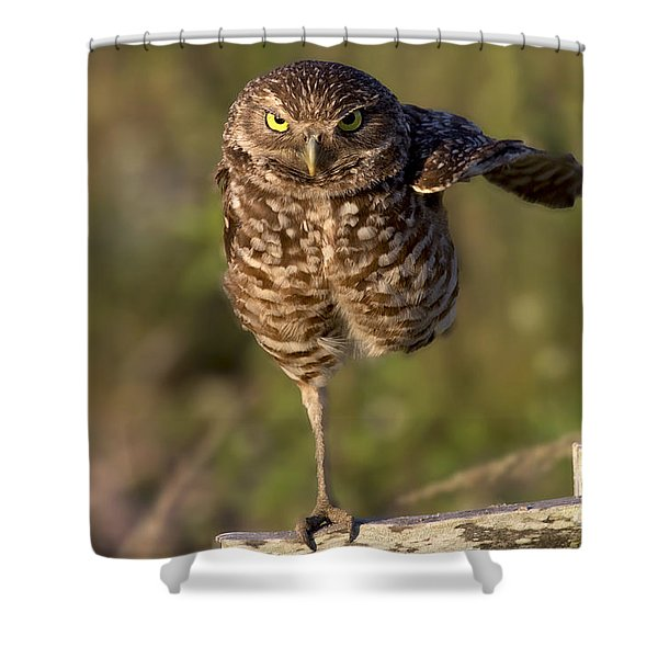 Burrowing Owl Photograph Shower Curtain