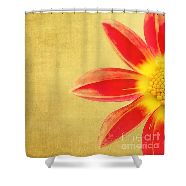 Dazzle Me Shower Curtain