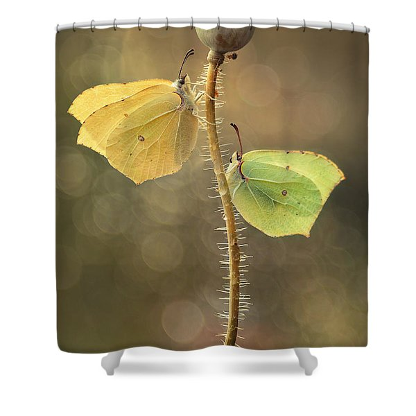 Shower Curtain featuring the photograph Duet by Jaroslaw Blaminsky