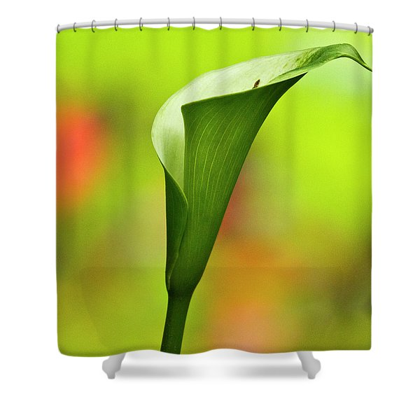 Green Calla Lily Shower Curtain