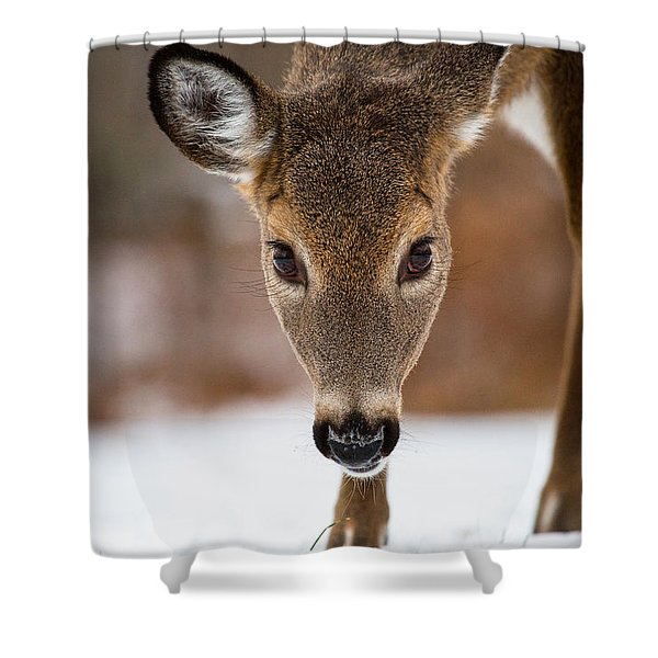 Heres Looking At You Shower Curtain