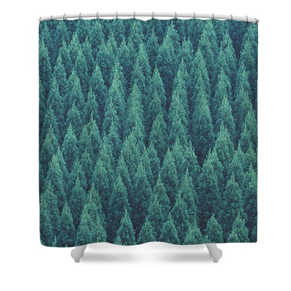 Kujyu Cho Ooita Japan Shower Curtain