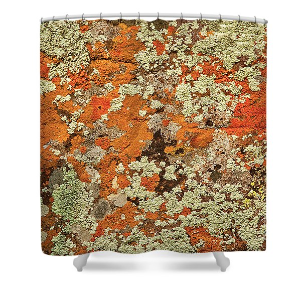 Shower Curtain featuring the photograph Lichen Abstract by Mae Wertz