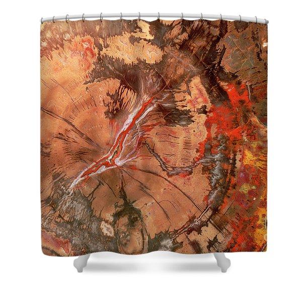 Petrified Wood Detail Shower Curtain