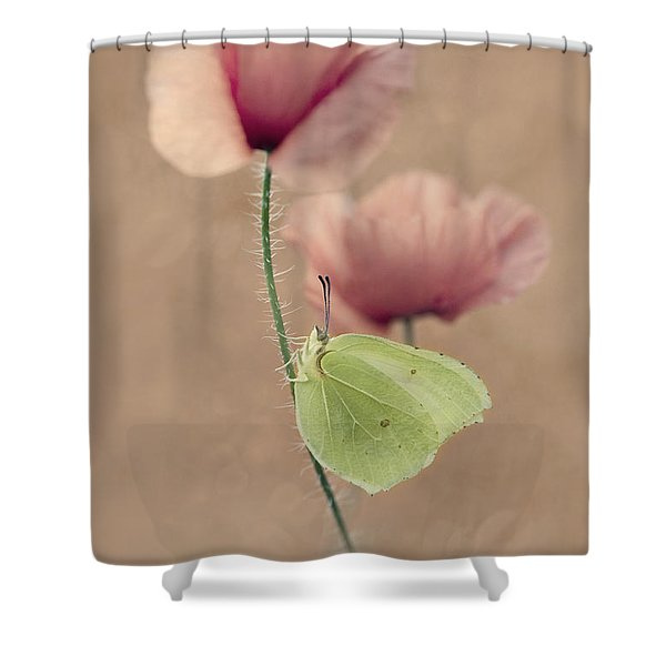 Shower Curtain featuring the photograph Poppies by Jaroslaw Blaminsky