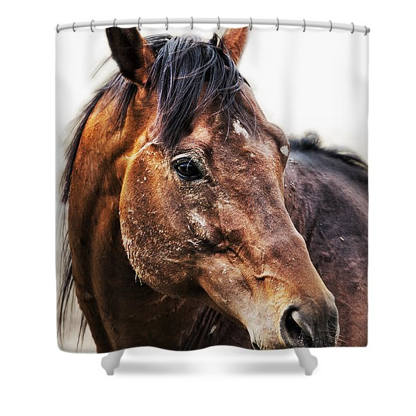 Resilience Shower Curtain