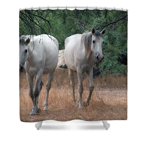 Salt River Wild Horse Shower Curtain