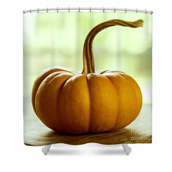 Small Orange Pumpkin Shower Curtain