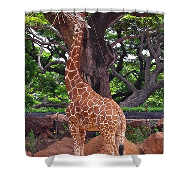 Stretching It Shower Curtain