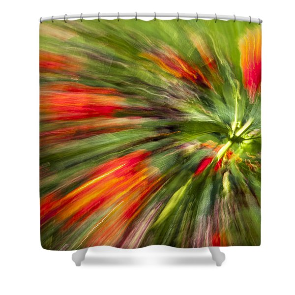 Swirl Of Red Shower Curtain