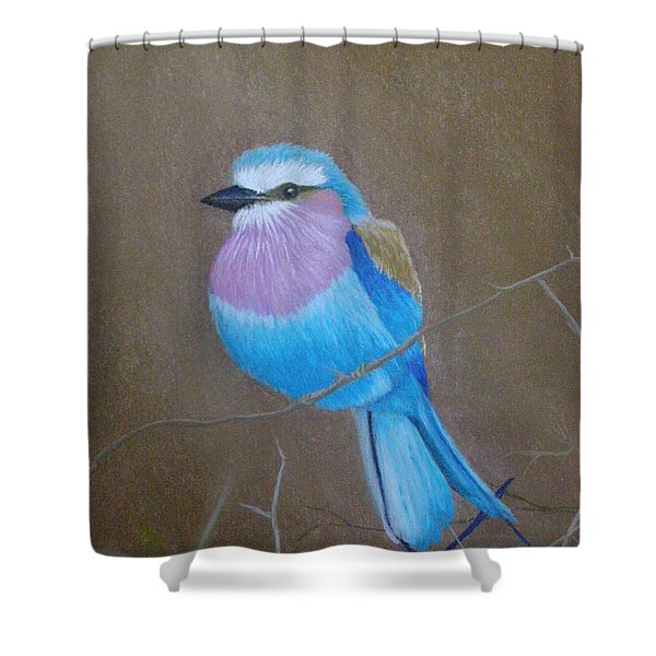 Violet-breasted Roller Bird Shower Curtain