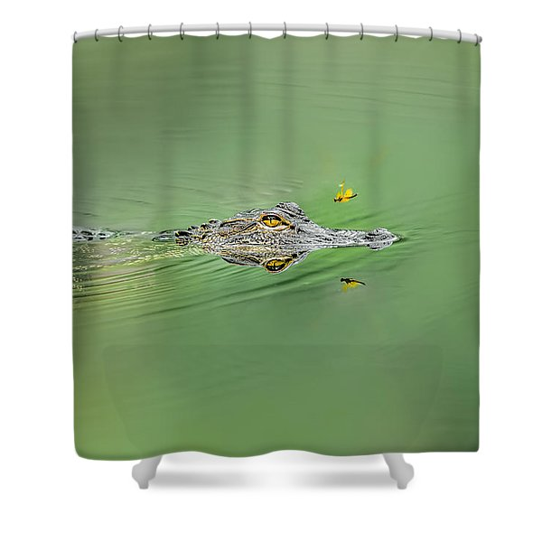 Alligator Shower Curtain