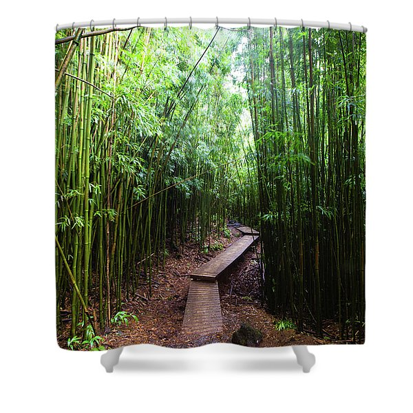 Boardwalk Passing Through Bamboo Trees Shower Curtain