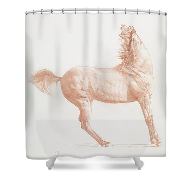 Kicking Off Shower Curtain