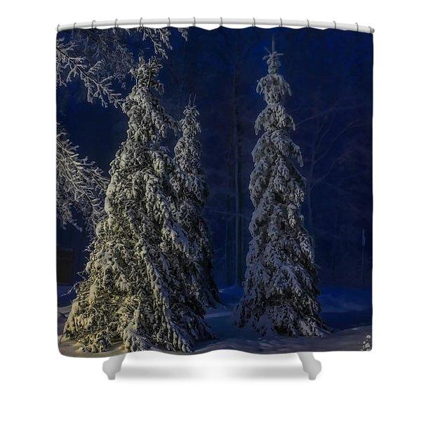 Rib Mountain State Park Snow Shower Curtain