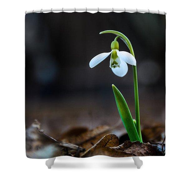 Snowdrop Flower Shower Curtain