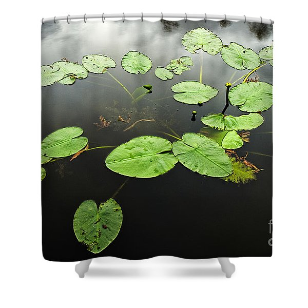 Stillness Shower Curtain