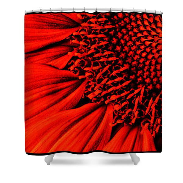 3 Tile Sunflower Colors Shower Curtain