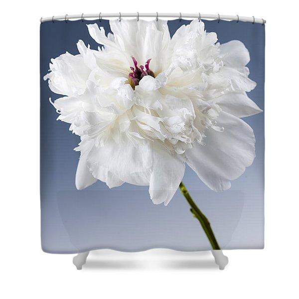 White Peony Flower Shower Curtain