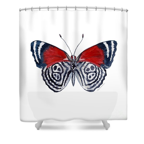 37 Diathria Clymena Butterfly Shower Curtain