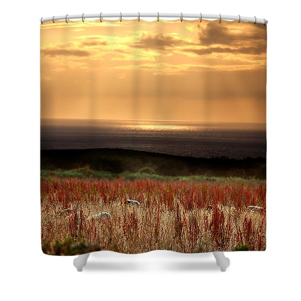 Evening At The Sea Shower Curtain