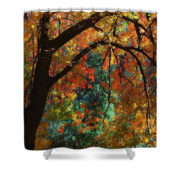 Fall Color Shower Curtain