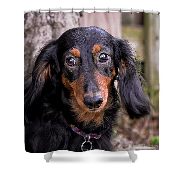 Shower Curtain featuring the photograph Katie by Jim Thompson