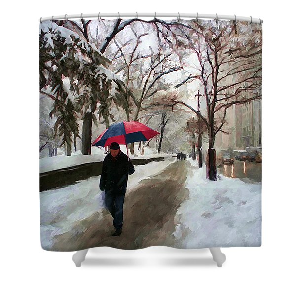 Snowfall In Central Park Shower Curtain