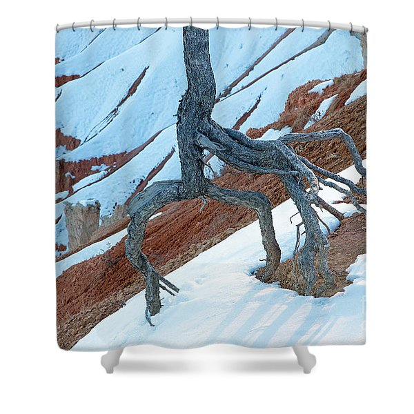 Sunrise Point Bryce Canyon National Park Shower Curtain