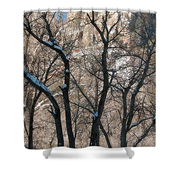 West Fork Shower Curtain