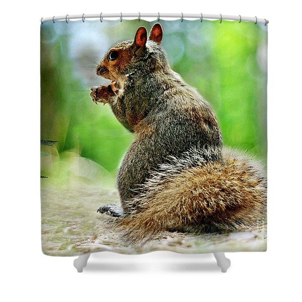 Harry The Squirrel Shower Curtain