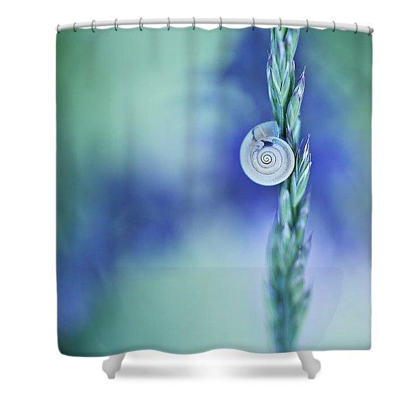 Snail On Grass Shower Curtain