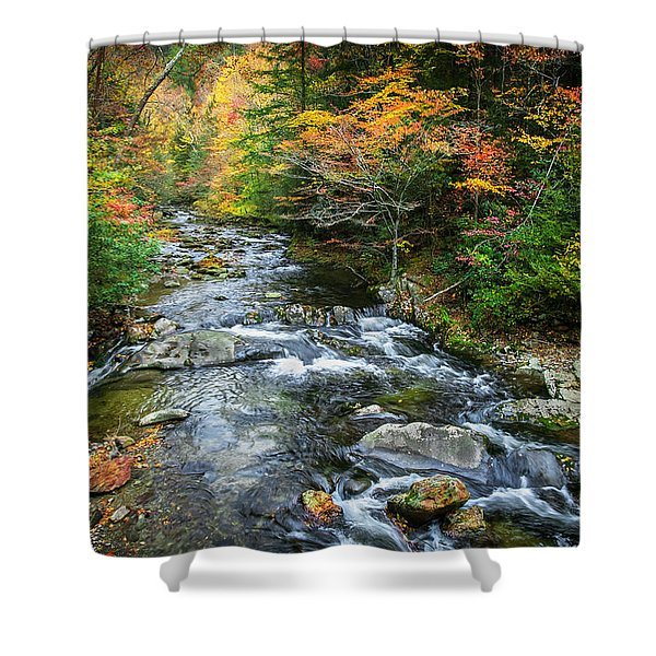 Stream Great Smoky Mountains Painted Shower Curtain