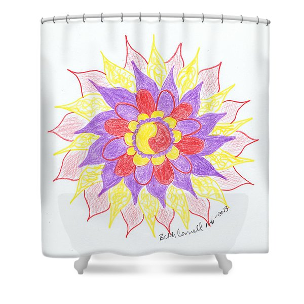 6 Shower Curtain