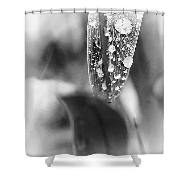 Raindrops On Grass  Shower Curtain