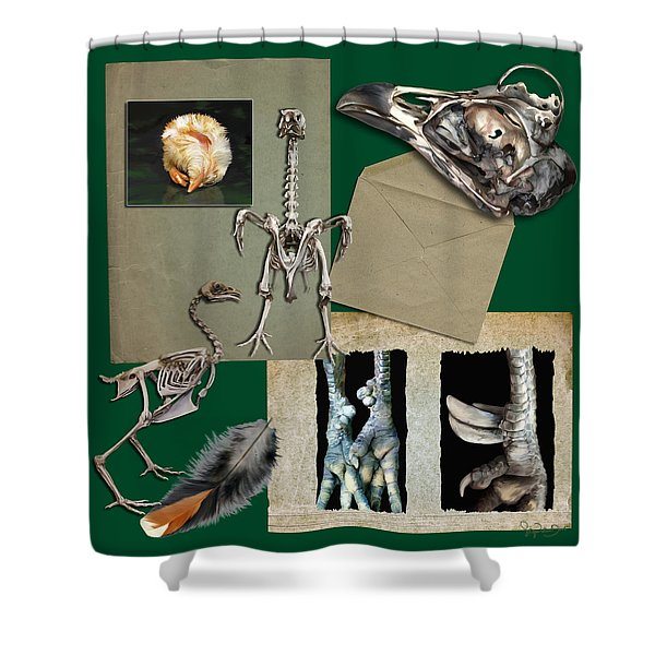 8. Chook Parts Shower Curtain