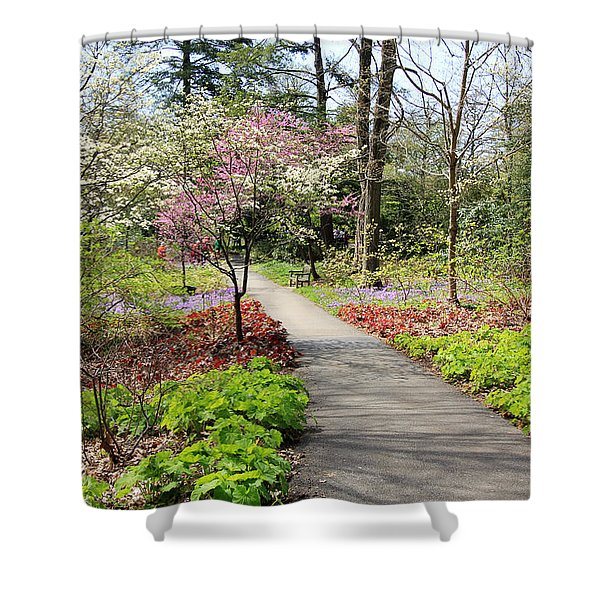 A Beautiful Spring Walk Shower Curtain