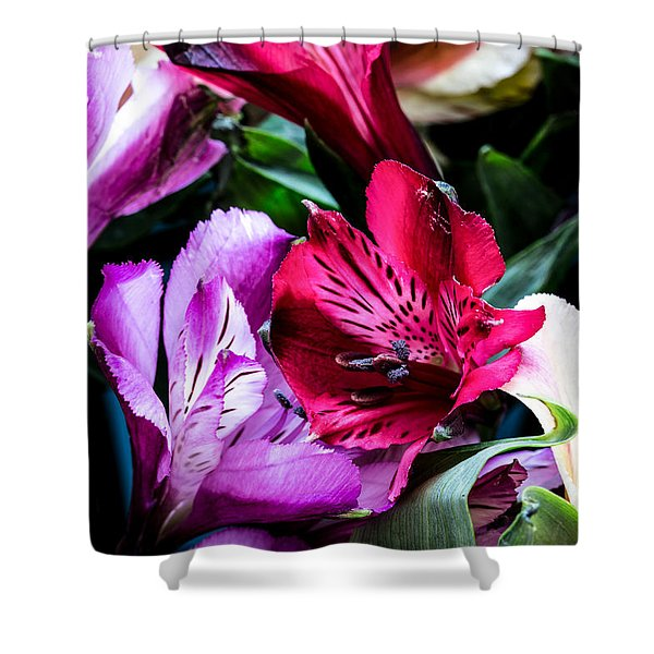 A Bouquet Of Peruvian Lilies Shower Curtain