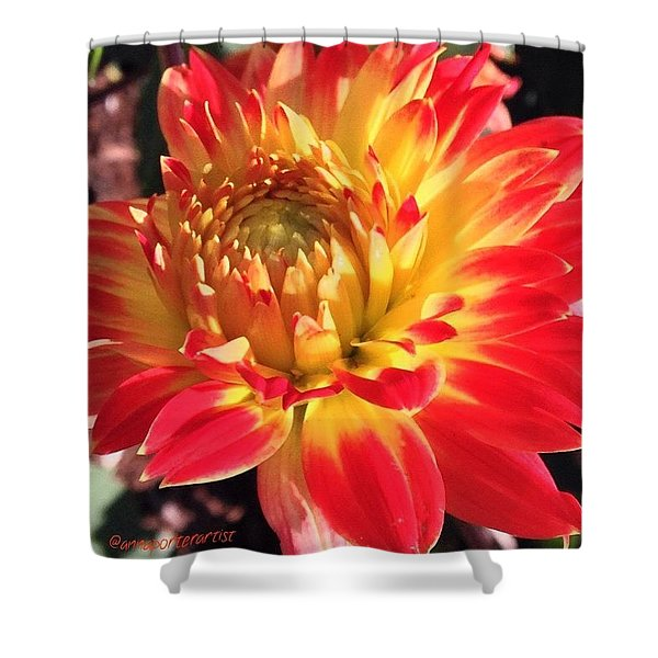 A Burst Of Fall Color Shower Curtain