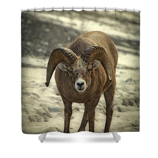 A Close Encounter Shower Curtain