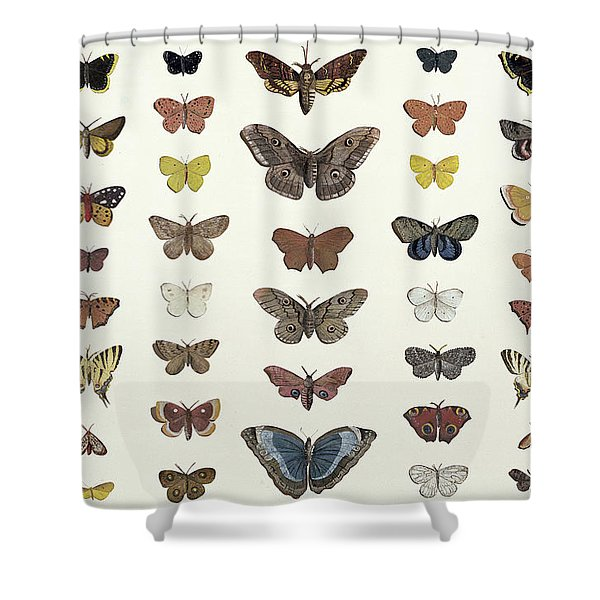 A Collage Of Butterflies And Moths Shower Curtain